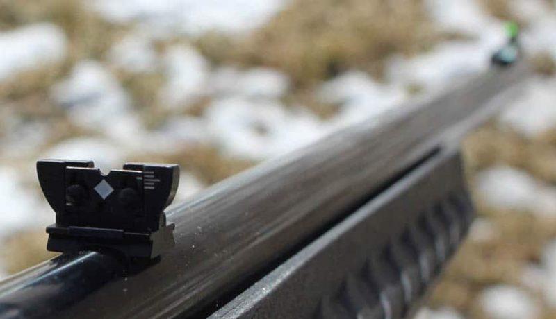 The Varmint Rifle