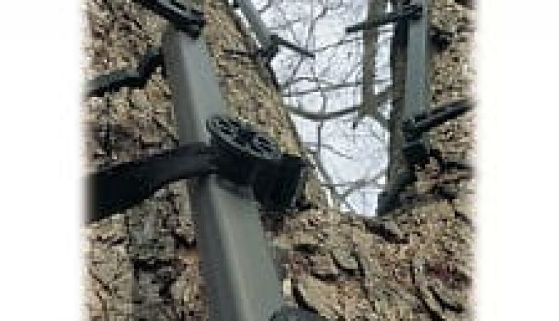 Lone Wolf Climbing Sticks Review